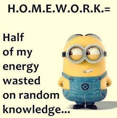 Photo of Homework