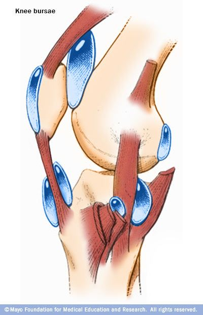 Treating bursitis with solomons seal weight loss pinterest bursa in the knee ccuart Gallery