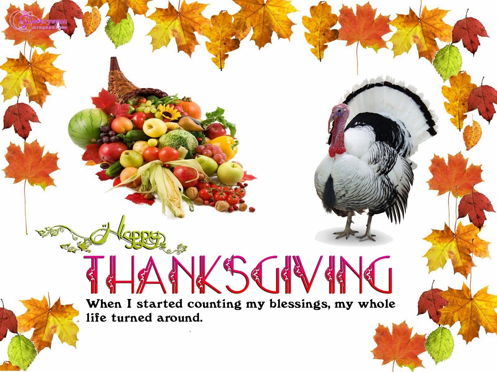 beautiful thanksgiving day quotes Happy thanksgiving