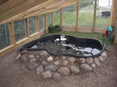 Pond for chickens and ducks ... http://www.backyardchickens.com/forum/uploads/43749_im001844.jpg