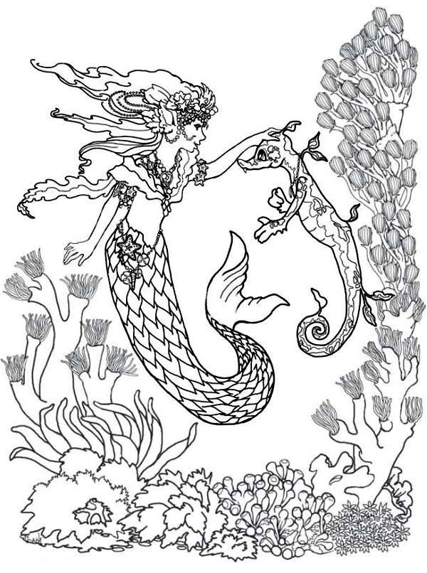 Merveilleux Mermaid, Mermaid Fairy And Sea Horse Coloring Pages: Mermaid Fairy And Sea  Horse Coloring PagesFull Size Image