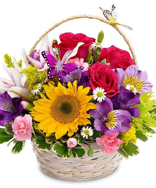 Send a Spring basket of mixed flowers.