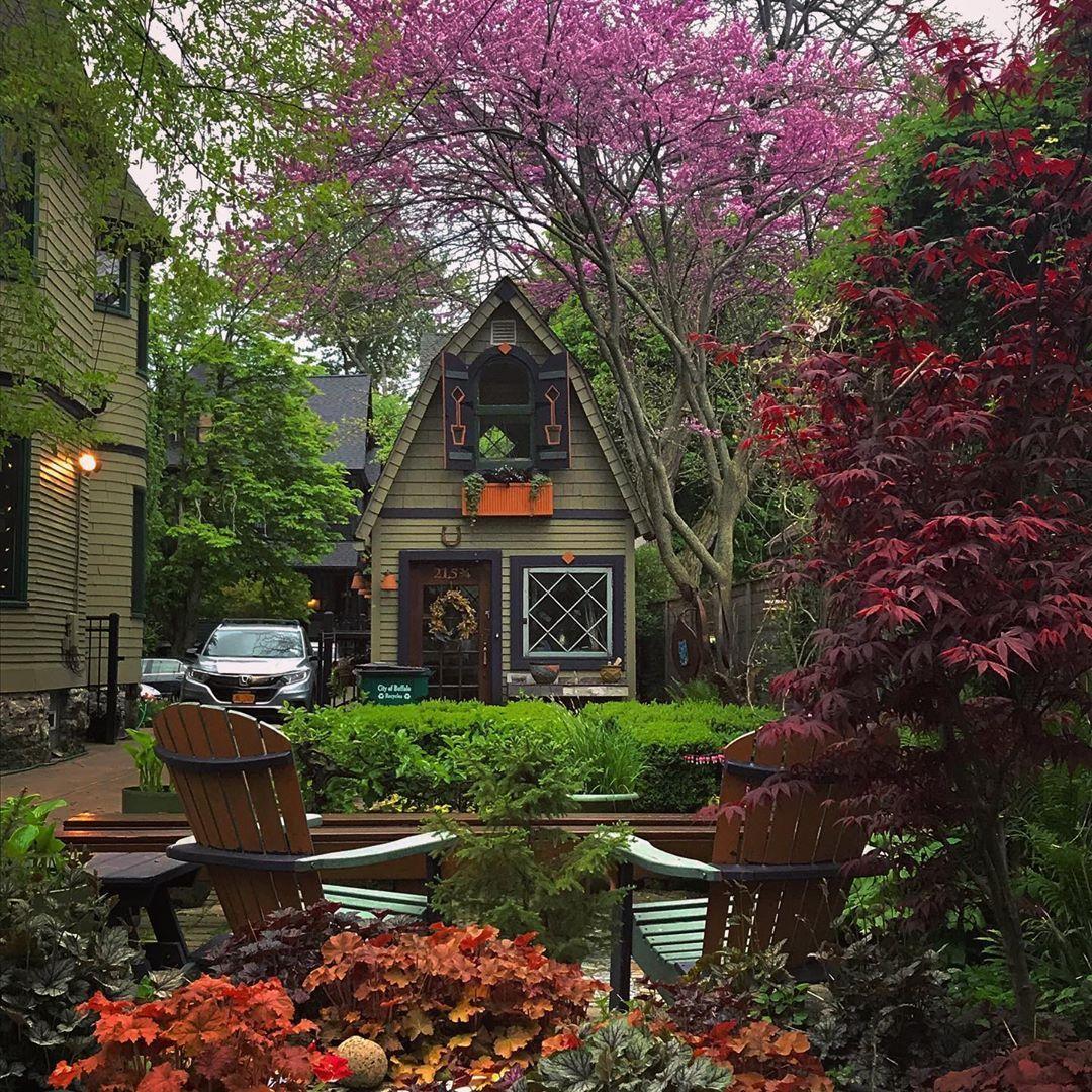 "Jim Charlier on Instagram: ""The redbuds are redbudding. #garden #mygarden #pottingshed #gardencottage #gardenshed #gardentravel #gardentourism #buffalony #inthebuf…"""