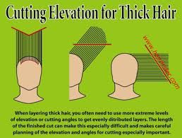Pin on Hair Hair Cutting Diagram on
