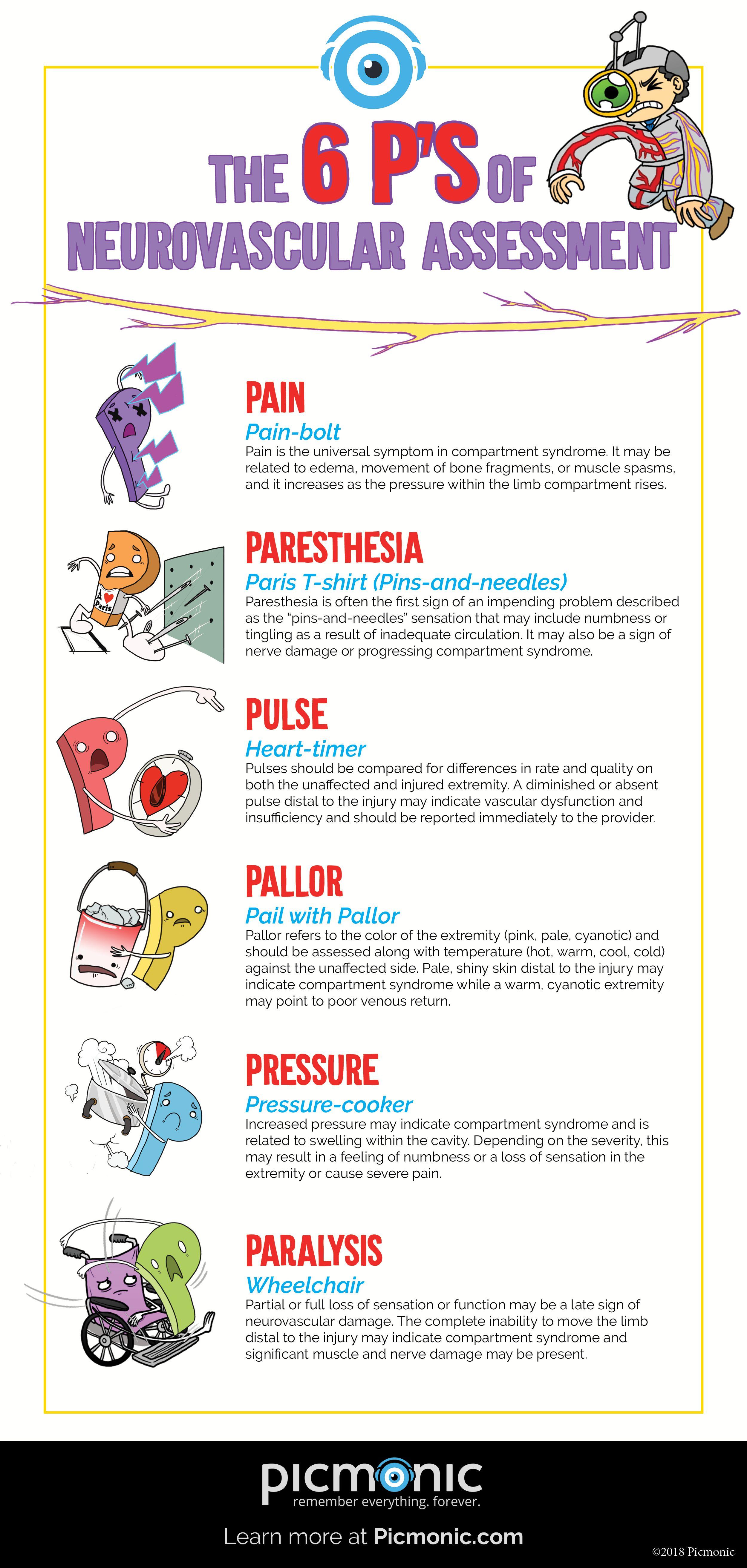 6 P S Of Neurovascular Assessment