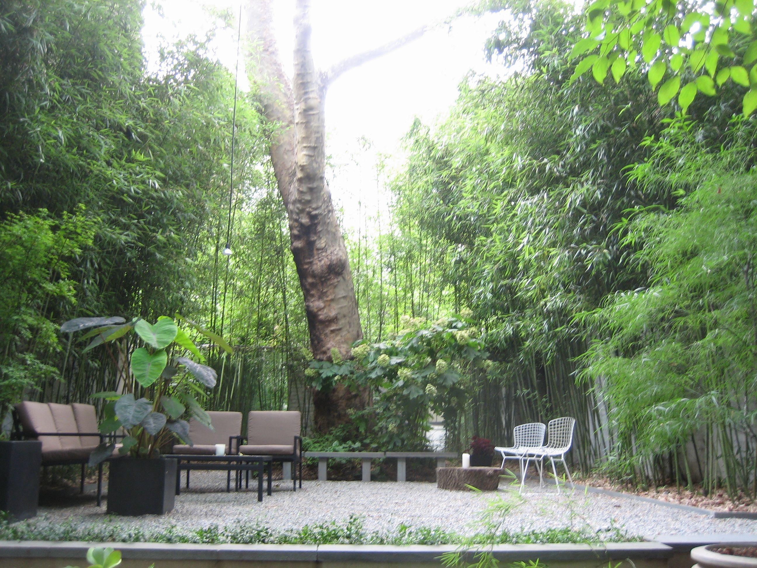 Verdant gardens design west village townhouse s third for Teich design west village