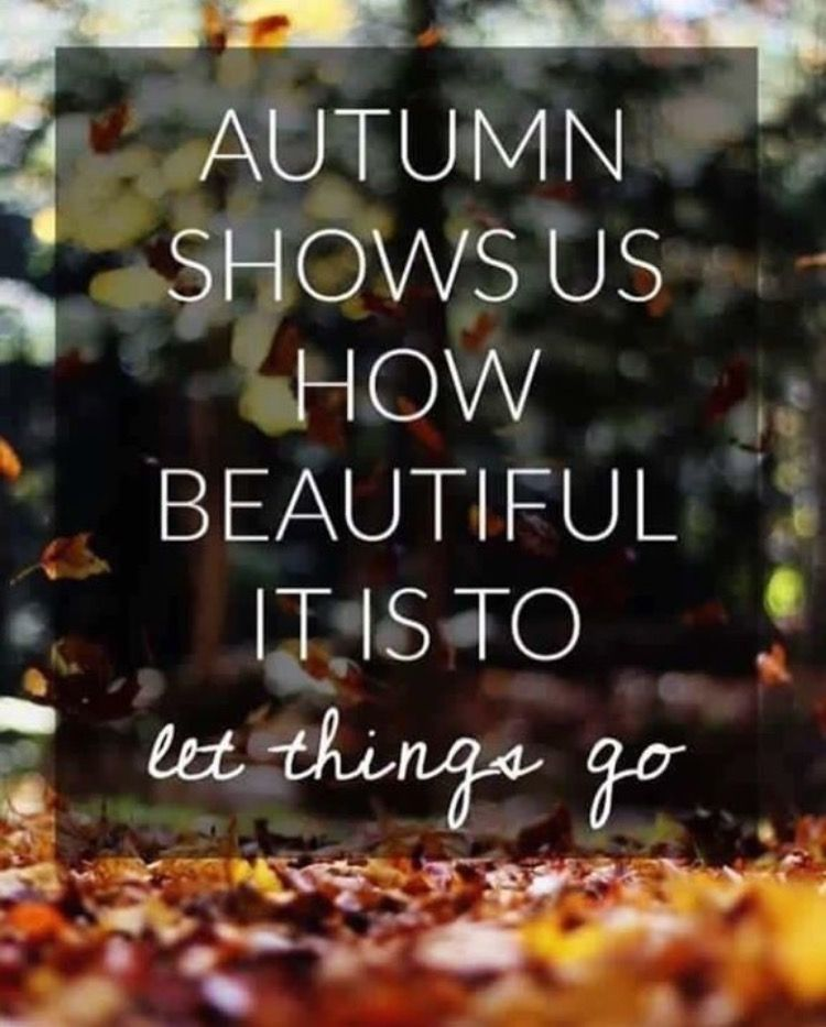 It's sooo true. What comes next will be beautiful too #autumnleavesfalling