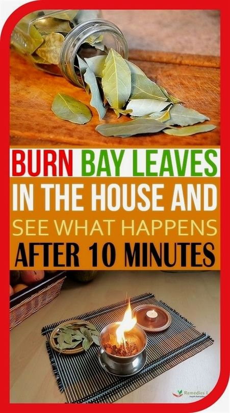 Burn Bay Leaves In The House And See What Would Ha
