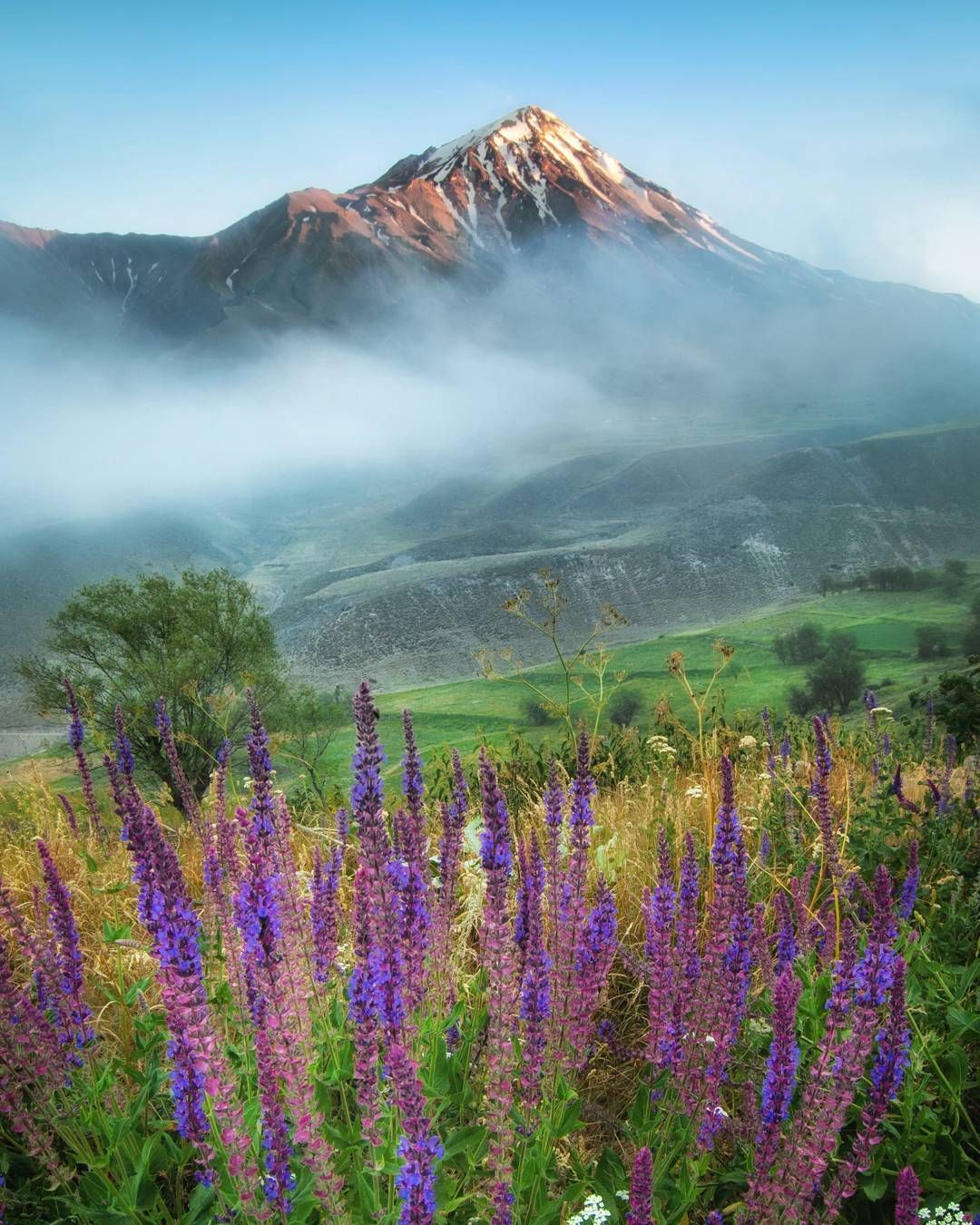Amol Iran Golestan National Park Iran National parks Nature