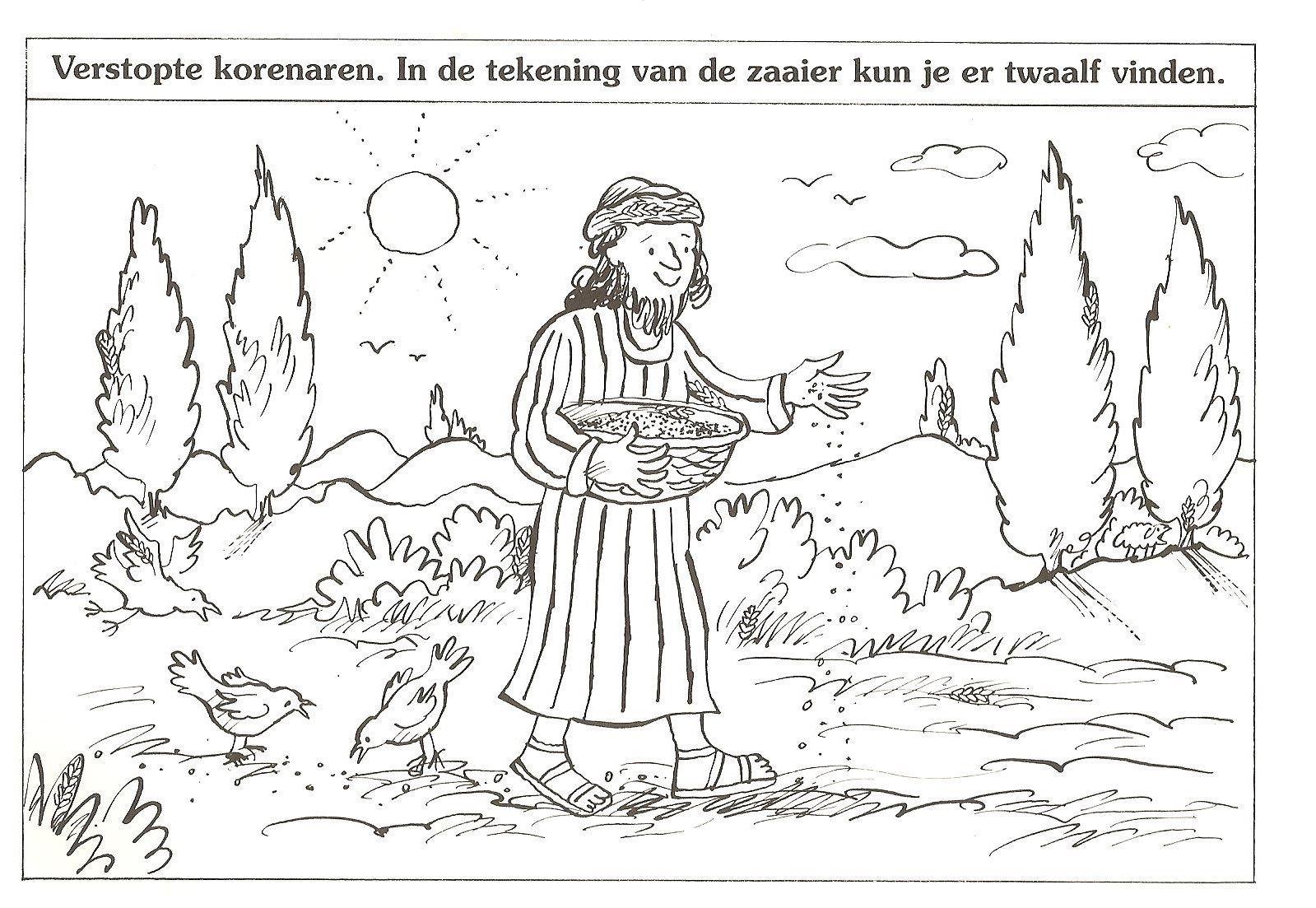 Verstopte Korenaren In De Tekening Van De Zaaier Kun Je Er Twaalf Vinden Gelijkenis Bijbel Kleurplaten Esther Bijbel Bijbel Knutselen