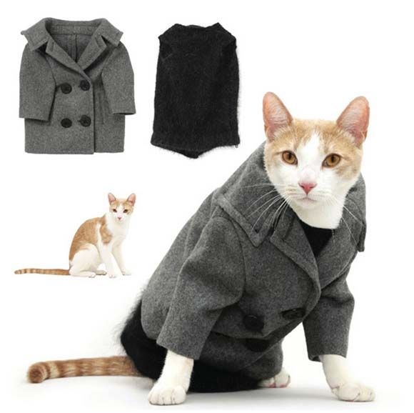 stylish cat clothes - Google Search, I need to make a peacoat for ...