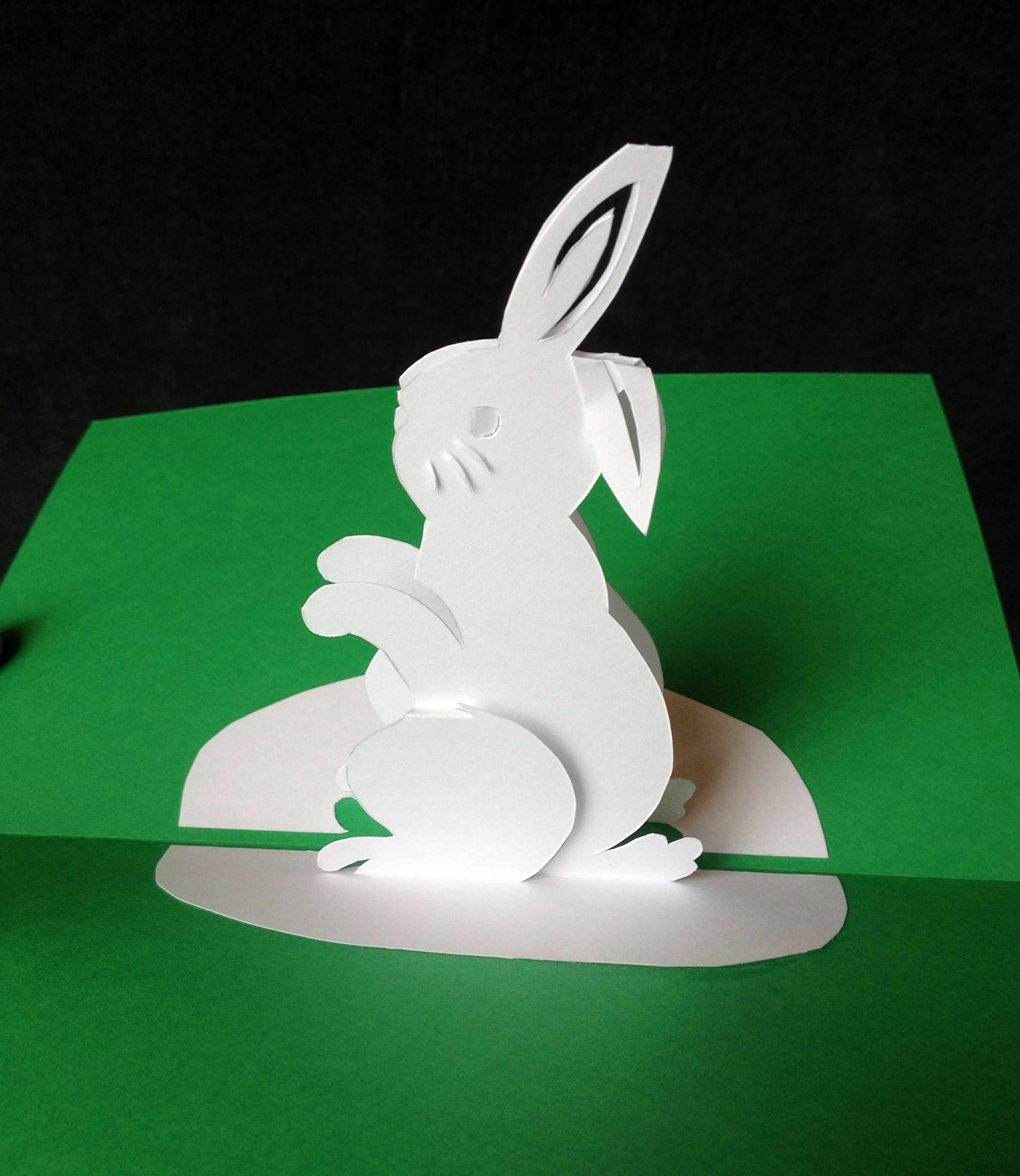 Rabbit Pop Up Card Pop Up Cards Pop Out Cards Christmas Cards Kids