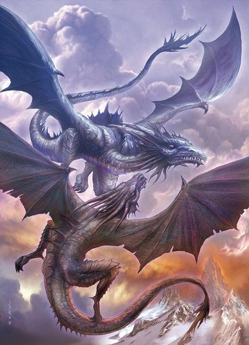 Two Dragons by Jan Patrik Krasny