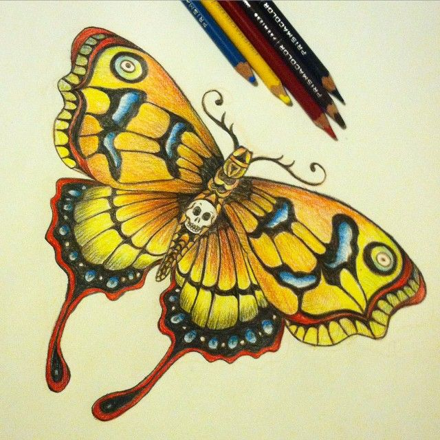 Image result for prisma drawings of butterflies