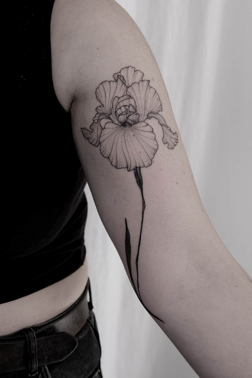 Ttt Taniavaiana Iris Tattoo Iris Flower Tattoo Flower Tattoo Shoulder
