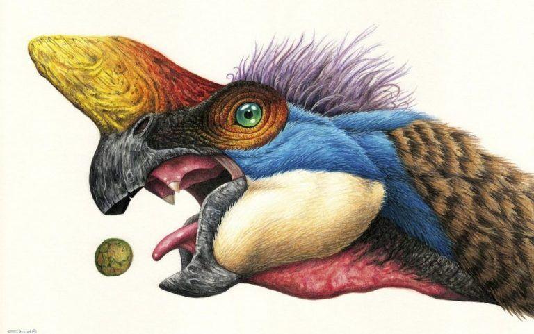 Pin En Dinosaurios Documental dinosaurios narrado por miguel peñaranda. pinterest