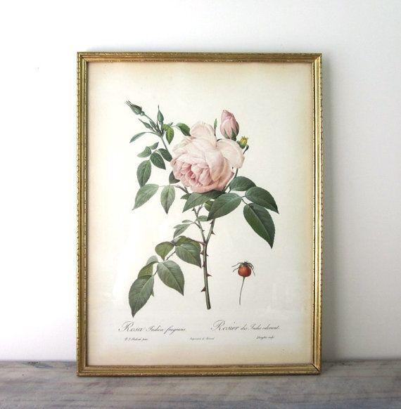 Vintage Pink Rose Print Framed in Gold Wood Frame by 22BayRoad, $27.00