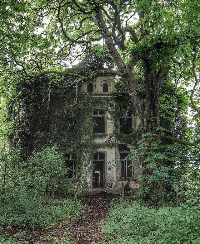 Overgrown Villa In Germany In 2020