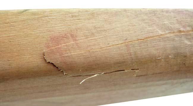 What To Do About Cricket Bat Cracking