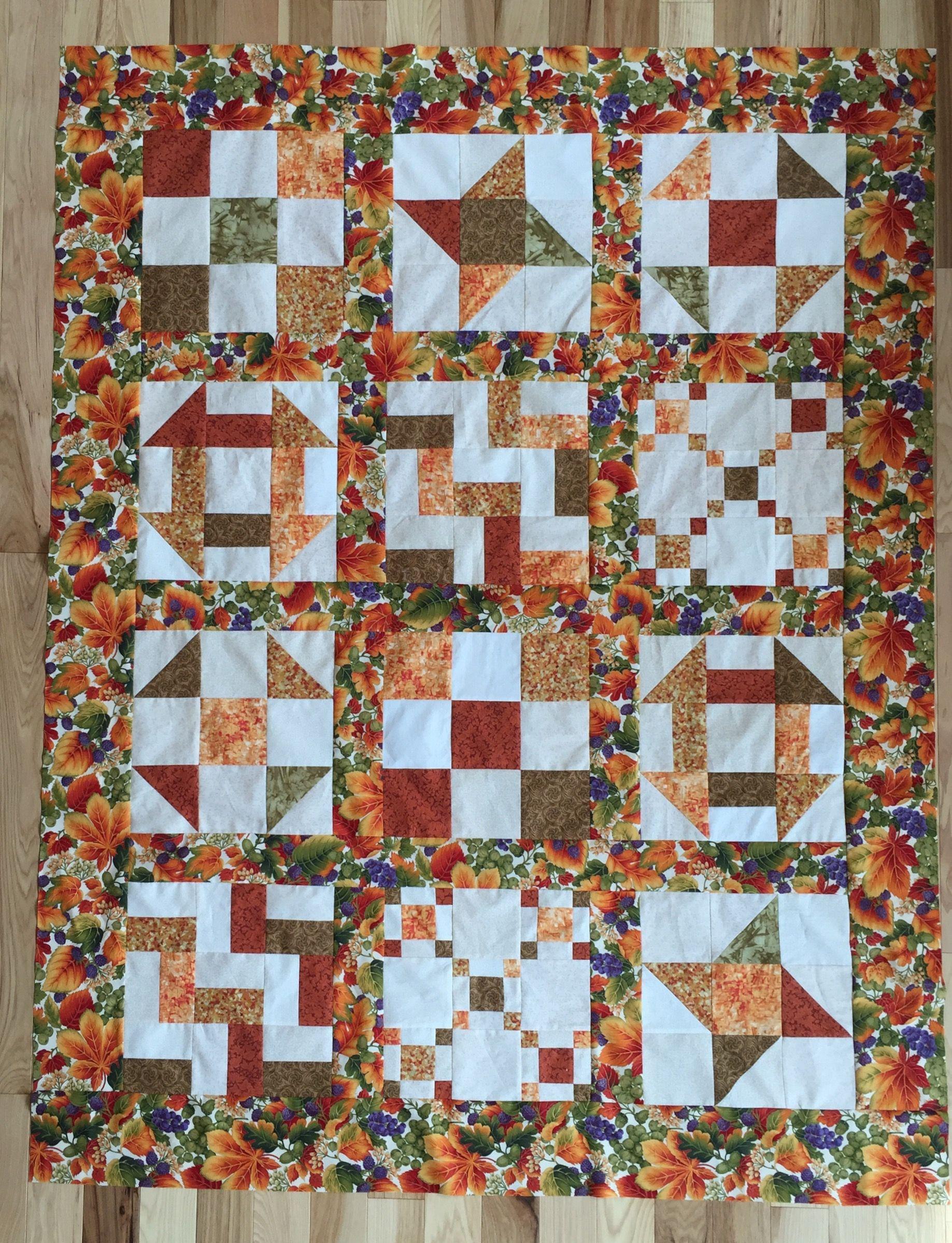 Nine Patch Sampler Quilt Sampler Quilt Quilts Sampler Quilts