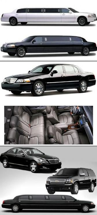 This Business Is Among The Limousine Companies That Provides
