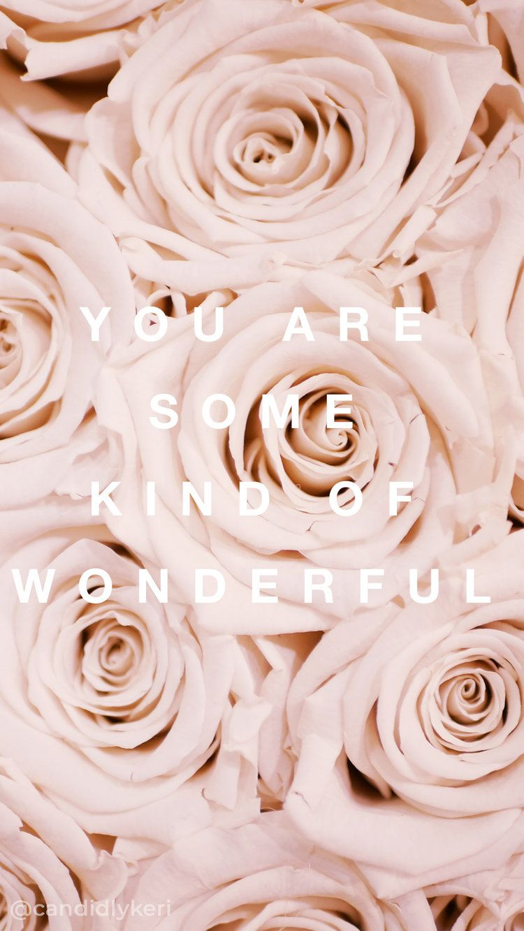 You Are Some Kind Of Wonderful Pale White Pink Roses Quote Inspirational Background Wallpaper Wallpaper Iphone Roses Rose Gold Wallpaper Pink Wallpaper Iphone