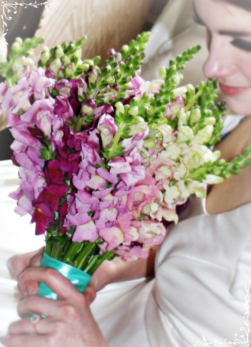 This is a beautiful idea for a brides or bridesmaid bouquet mixed this is a beautiful idea for a brides or bridesmaid bouquet mixed snapdragons izmirmasajfo