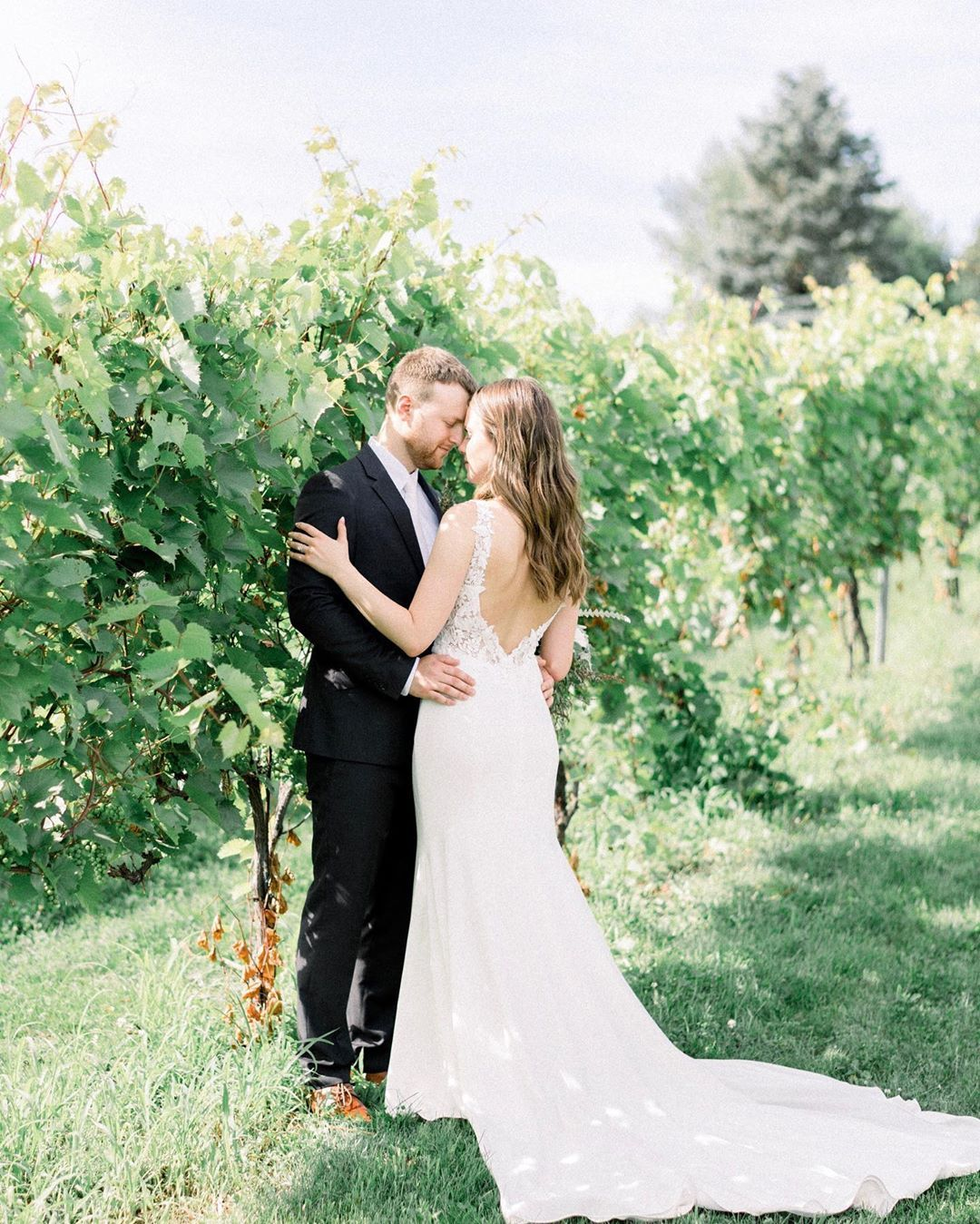 More Weddings In A Vineyard Please Did You Guys Know I Have A Dreams Section On The Stories In Wedding Bridesmaid Dresses Wedding Guest Dress Wedding Dresses [ 1349 x 1080 Pixel ]