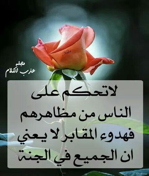 لا تحكم علي الناس من مظاهرهم Holy Quran Words Qoutes