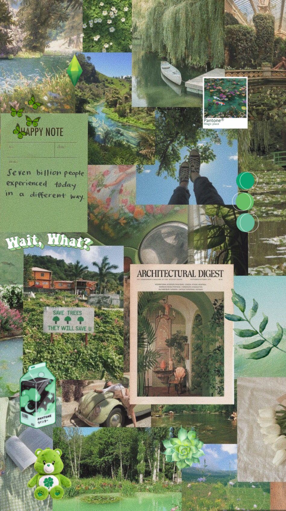 Green aesthetic wallpaper