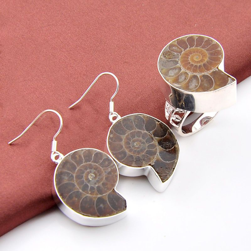 0b1022d0c 50% Sale Off Jewelry Set Natural Ammonite Fossil Vintage Silver Earrings  Rings