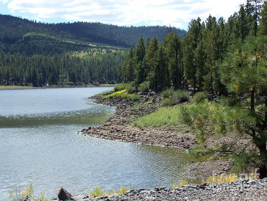 Big Lake Near Greer Az With Images Arizona Lakes
