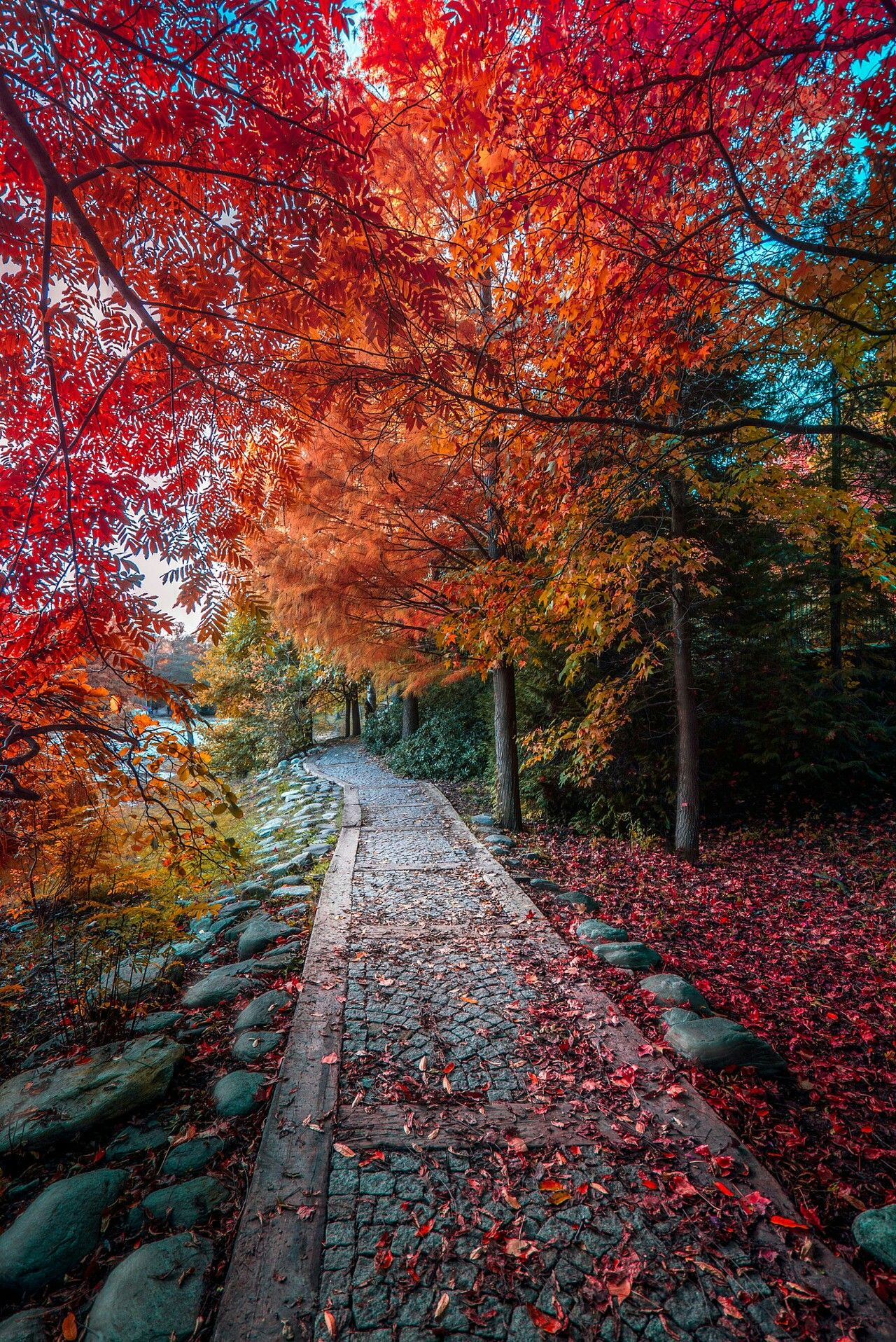 Pin By Prairie Flower On Fall Beautiful Nature Nature Photos Scenery