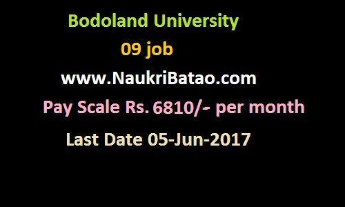 Office Assistant - Bodoland University Recruitment 2017 - Graduate - office assistant job description