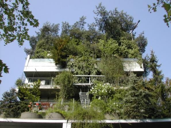 Baumhaus Architekturbüro ein pionier mit ot hoffmann architekt des baumhauses in