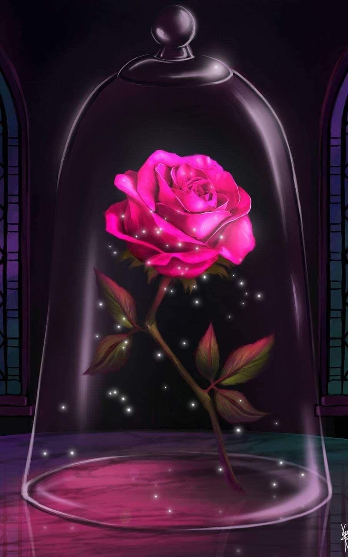 Pin By Nicole Bantze On Fond D Ecran Rose Wallpaper Beast Wallpaper Galaxy Wallpaper