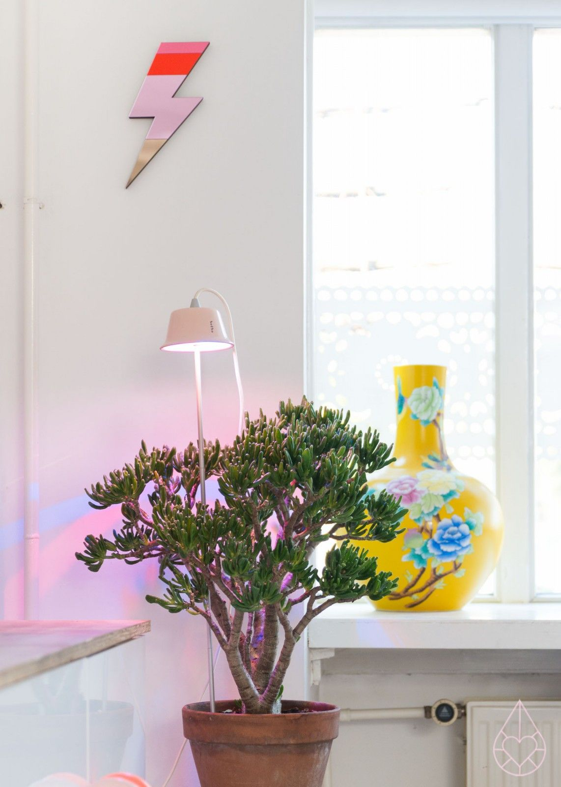 Bulbo Light For Food Zilverblauw Interieur Planten Lampen