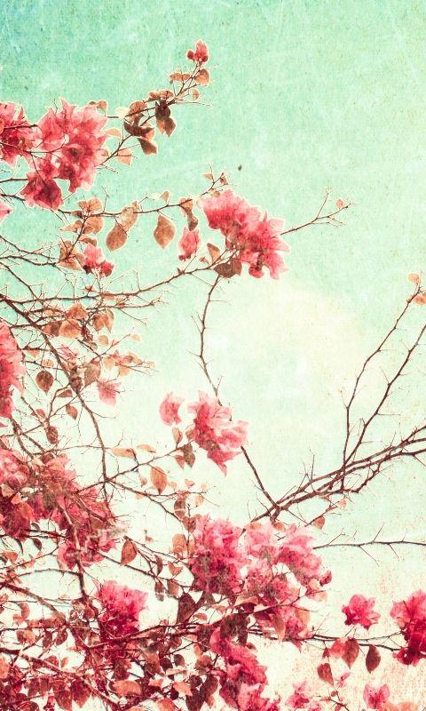 Vintage Flowers Mobile9 Vintage Phone Wallpaper Floral