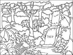 Amazon River Colombia Jungle Coloring Pages Forest Coloring