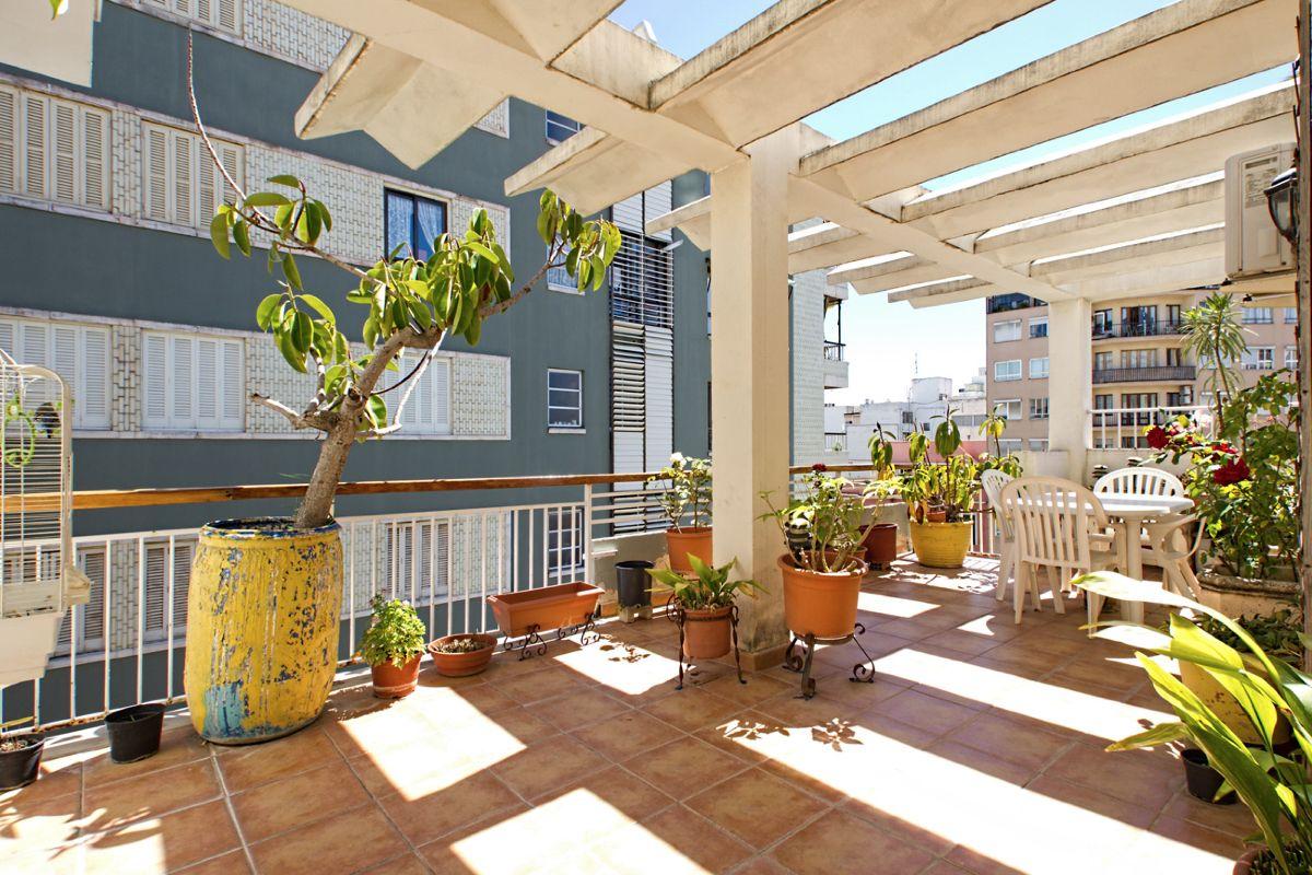 Lägenhet med terrass nära Palma Sport och Tennis Club