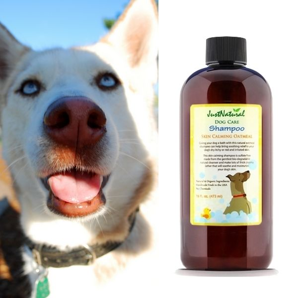Dog Shampoo Skin Calming Oatmeal Giving Your Dog A Bath With This
