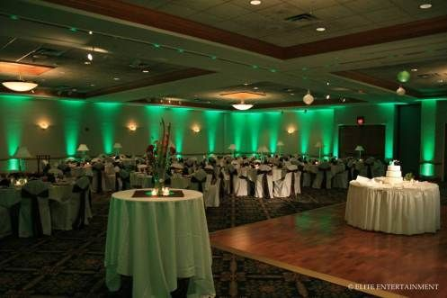 Green Wedding Lights I Like The Softer Glow More Than