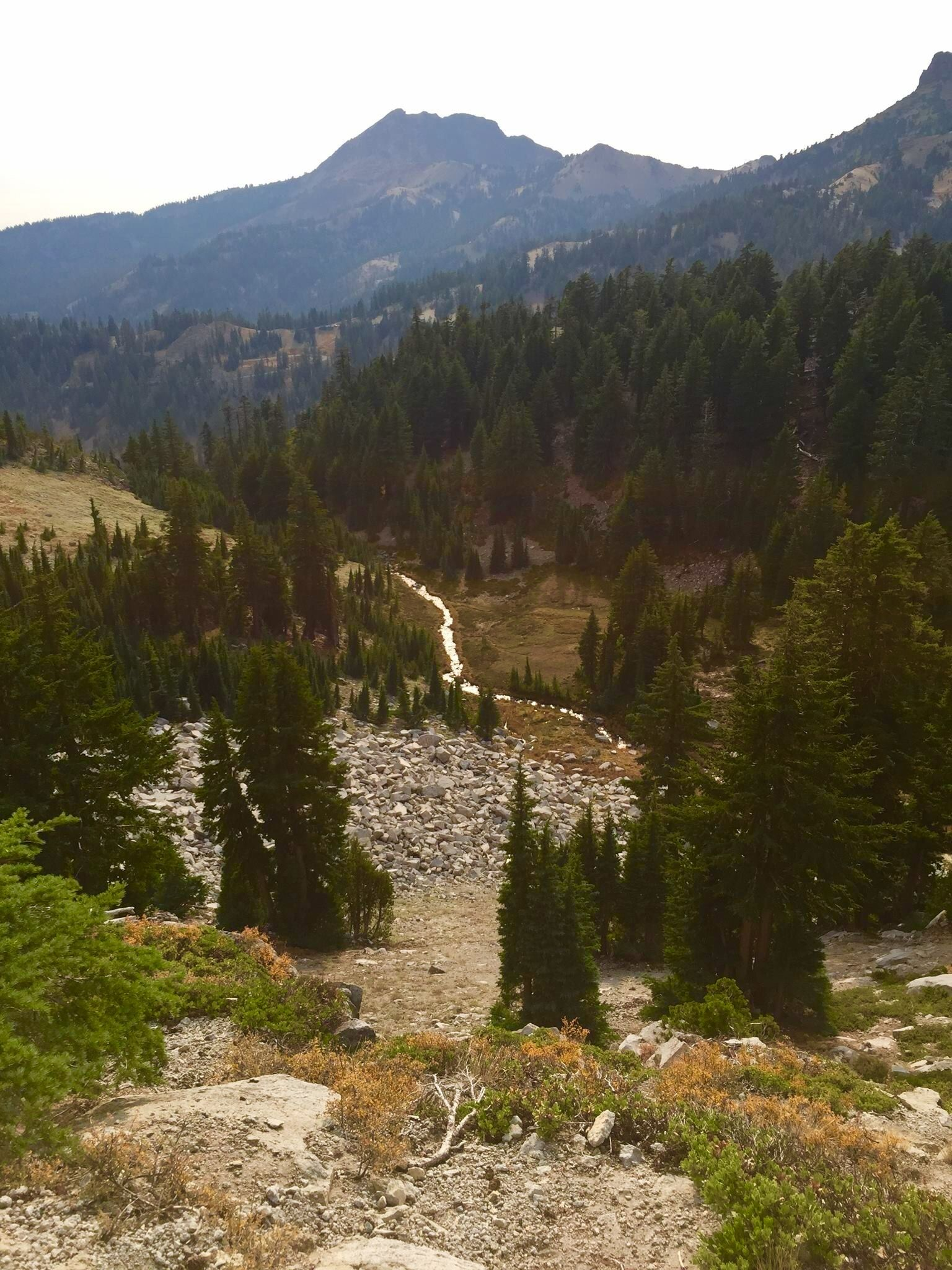 Pin on East Bay to The Redwoods Road Trip ideas