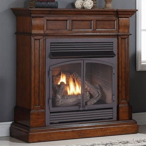 Duluth Forge Dual Fuel Ventless Fireplace 32 000 Btu T State
