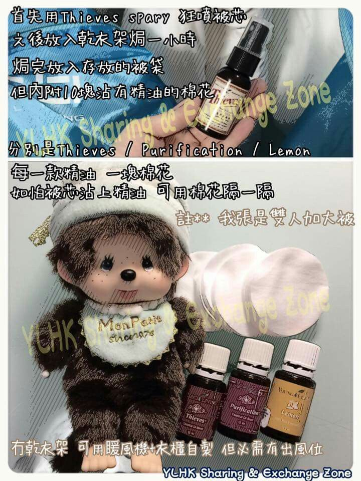 Pin by Shirley Wong on young living 中文 | Teddy bear