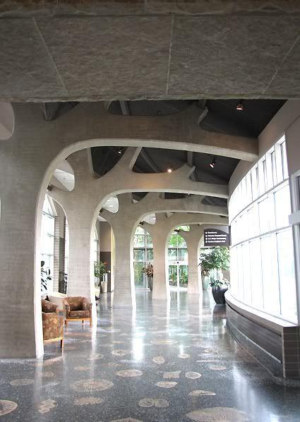 Concrete Column Design : Concrete tree columns photography pinterest