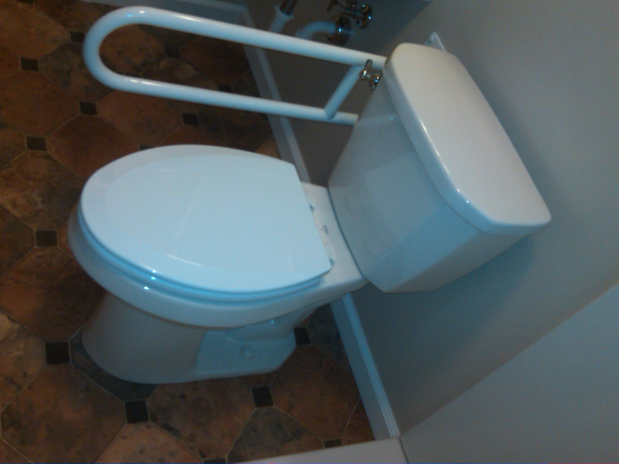Fold down grab bar and higher toilet. | Universal Builds and ...