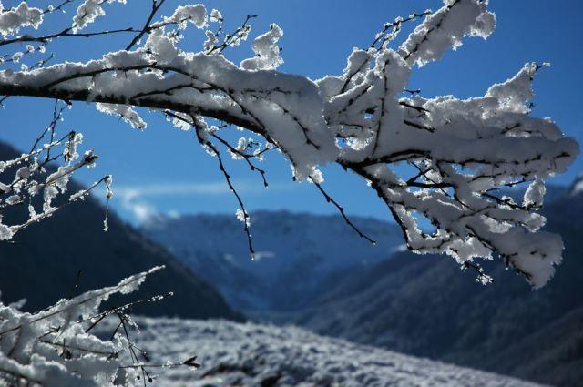 Questo #inverno tieniti in #allenamento con una #vacanza in Val di Fassa all' Hotel La Serenella Moena! #sci #snowboard #nordicwalking #trekking e tanto altro! Scopri di più: http://bit.ly/vacanza-attiva-moena