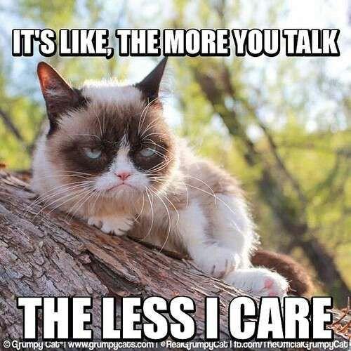 4098cf13014140866dc340b67e1dd7f7 same grumpy cat same some funny stuff pinterest grumpy cat