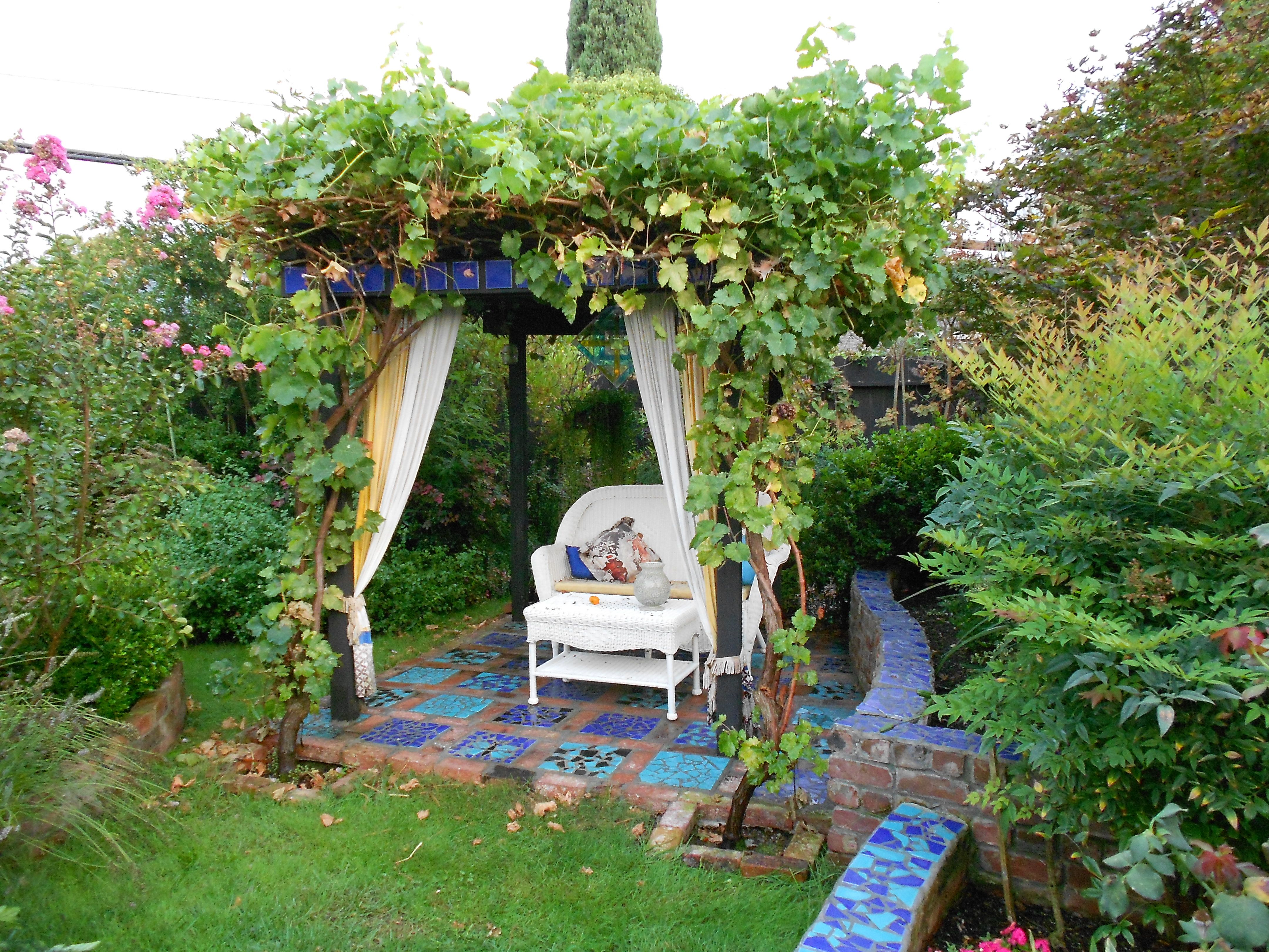 Built the pergola and covered it with grape vines the patio the patio underneith is the same broken tile design the pergola cost 80 to build so inexpensive if you do it yourself solutioingenieria Images
